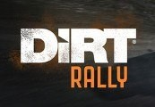 DiRT Rally South America Steam CD Key