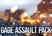 PAYDAY 2: Gage Assault Pack Steam CD Key