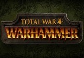 Total War: Warhammer + Chaos Warriors Race Pack RU VPN Required Steam CD Key