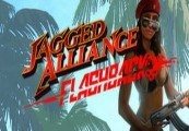 Jagged Alliance Flashback Steam CD Key