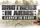 Brothers in Arms: Earned in Blood Steam Gift