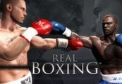 Real Boxing Steam Gift