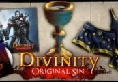 Divinity: Original Sin - Source Hunter DLC Steam CD Key