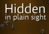 Hidden in Plain Sight Steam CD Key