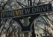 Pineview Drive Steam Gift