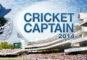 Cricket Captain 2014 Steam Gift