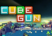 CubeGun (Early Access) Steam CD Key