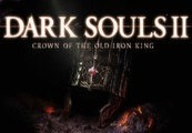 Dark Souls II - Crown of the Old Iron King DLC Steam CD Key