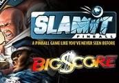 SlamIt Pinball: Big Score Steam CD Key