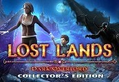 Lost Lands: Dark Overlord Steam CD Key