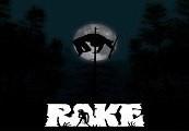 Rake Steam Gift