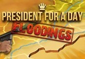 President for a Day - Floodings Steam CD Key