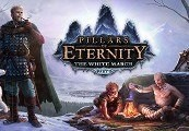 Pillars of Eternity: Hero Edition + The White March Expansion Pass Steam CD Key