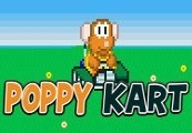 Poppy Kart Steam CD Key