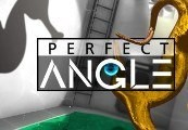 Perfect Angle Steam CD Key
