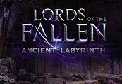Lords of the Fallen Day One Edition + Ancient Labyrinth DLC Steam CD Key