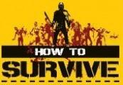 How to Survive Dead Summer Days Bundle Steam Gift