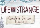 Life Is Strange Complete Season (Episodes 1-5) Steam Altergift