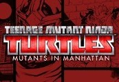 Teenage Mutant Ninja Turtles: Mutants in Manhattan Steam CD Key