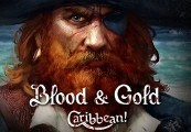 Blood & Gold: Caribbean! Steam CD Key