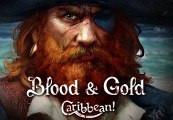 Blood & Gold: Caribbean! Steam Altergift