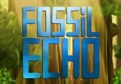 Fossil Echo Steam CD Key