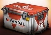 VandalSports CS:GO Skin Case