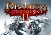 Divinity: Original Sin 2 GOG CD Key