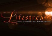 Lifestream: A Haunting Text Adventure Steam CD Key