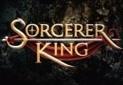 Sorcerer King Steam Gift