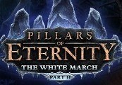 Pillars of Eternity: The White March - Part 2 RU VPN Activated Steam CD Key