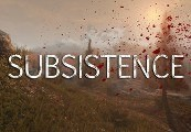 Subsistence Steam CD Key