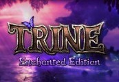 Trine Enchanted Edition GOG CD Key