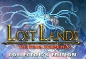 Lost Lands: The Four Horsemen Collector's Edition Steam CD Key
