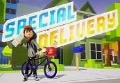 Special Delivery Steam CD Key