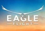 Eagle Flight Steam Gift