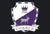 CS:GO - Series 2 - Cobblestone Collectible Pin