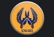 CS:GO - Series 2 - Guardian 2 Collectible Pin