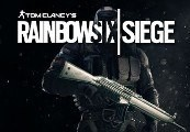 Tom Clancy's Rainbow Six Siege - Platinum Weapon Skin Uplay CD Key