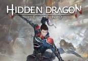 HIDDEN DRAGON LEGEND EU PS4 CD Key