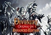 Divinity: Original Sin Enhanced Edition US PS4 CD Key