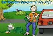 Car Washer: Summer of the Ninja Steam CD Key