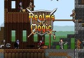 Realms of Magic Steam CD Key