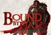 Bound By Flame EU Steam CD Key