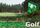 Perfect Golf Steam CD Key