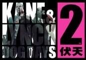 Kane & Lynch Ultimate Pack Steam CD Key