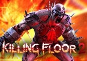 Killing Floor 2 + Early Access Clé CD Steam