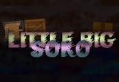 LittleBigSoko Steam CD Key