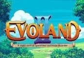 Evoland 2 2-pack Steam CD Key