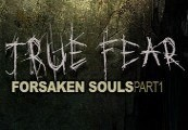 True Fear: Forsaken Souls Steam Gift